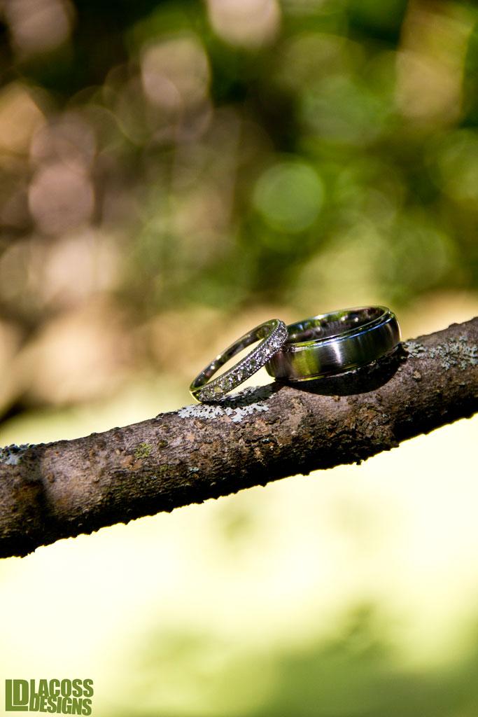 Wedding Rings On Branch – LacossDesigns.com